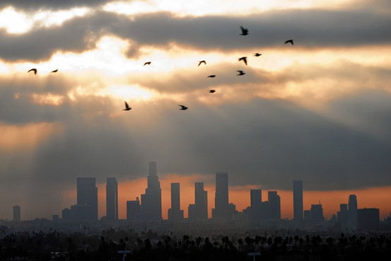 Air Pollution Over Los Angeles Skyline