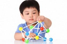 neuro-mitos en la escuela