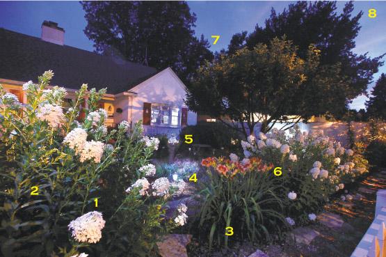 The Moon Garden Rosellen Bohlen Planted In Her Yard In