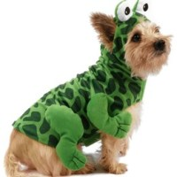 What's Selling Where | Dog Costumes - WSJ