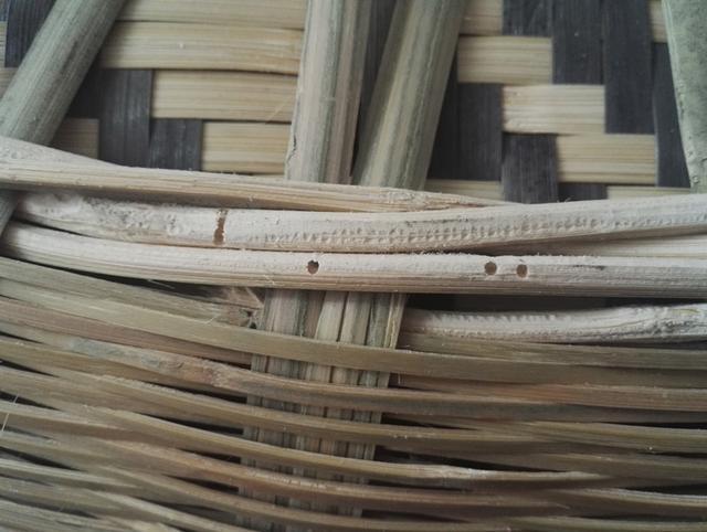 生蟲發霉成為竹編製品第一殺手,在存放選取過程中如何有效避免 - 每日頭條