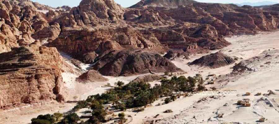 واحات سيناء - واحة عين خضراء