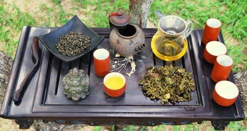 Exploration von Jin Xuan Taiwan Oolong Cultivar Nr. 12 in meiner Gong Fu Cha