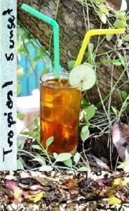 Mischung aus grünem und schwarzem thailändischem Tee mit tropischen Früchten