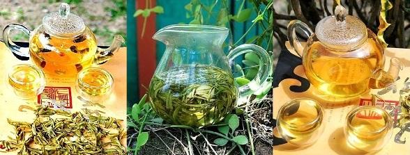 "Naturnah angebauter High Mountain Anji Bai Cha / Anji ""Weißer Tee§"