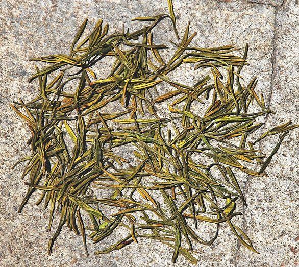 "Anji Bai Cha Grüner Tee / Anji ""Weißer"" Tee aus Anji County, Provinz Zhejiangtrockene, nadelförmig gerollte Teeblätte"