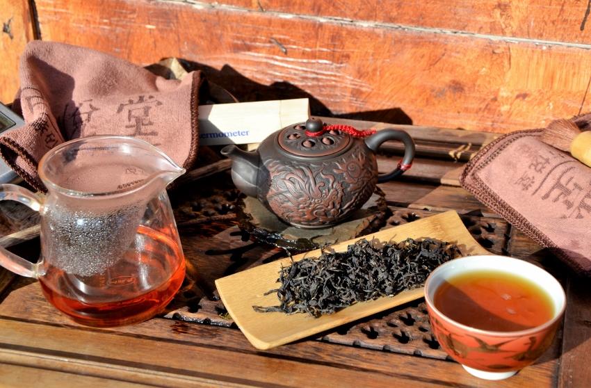 Erste Frühlingsernte (First Flush) des Doke Teegarten in Bihar, Indiendes