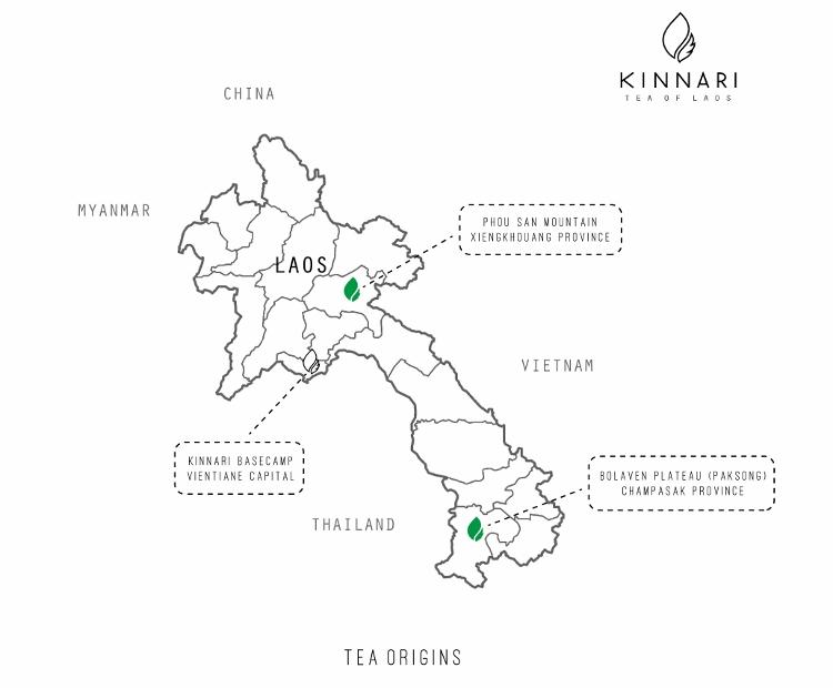 Kinnari Tee - Karte : Kinnari Anbaugebiete Xiengkhouang und Bolaven Plateau in Laos