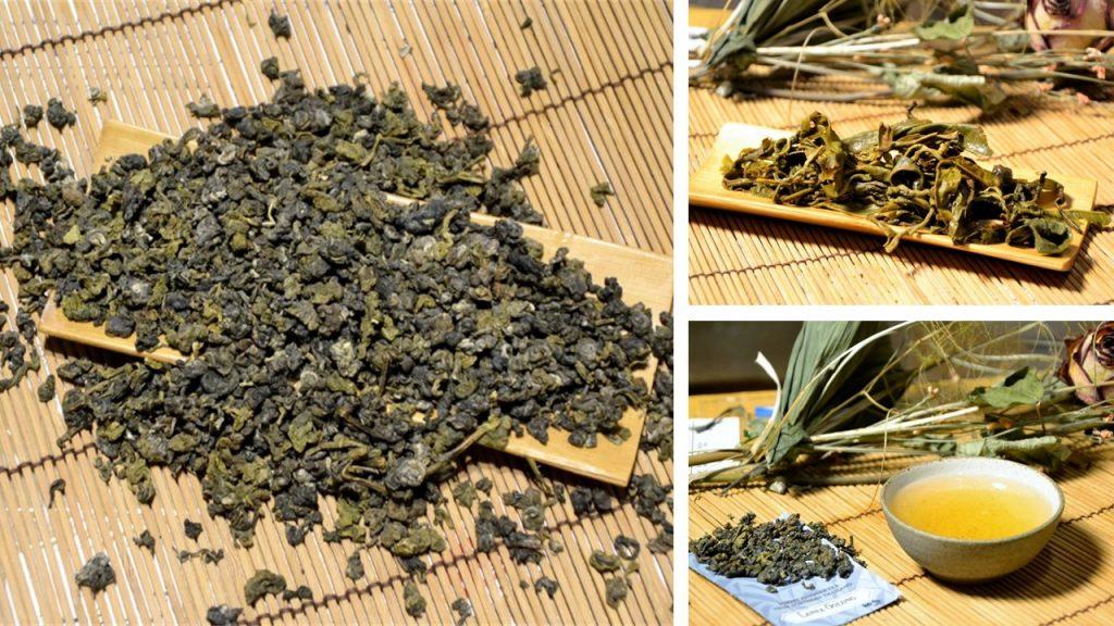 Lanna Oolong Tea - oolong tea from natural growing tea trees in northern Thailand