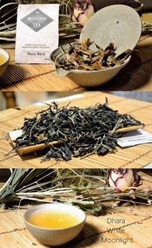 Dhara White Moonlight Weißer Tee aus wald- und klimafreundlicher Kultivierung in Nordthailand