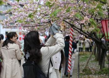 Le nombre de touristes thaïlandais au Japon dépasse le million