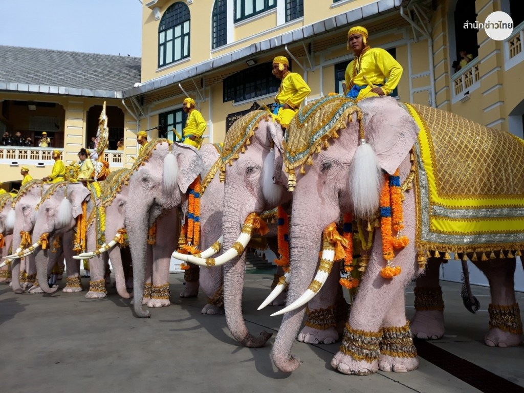 Des éléphants d'Ayutthaya paradent à Bangkok pour honorer le Roi de Thaïlande
