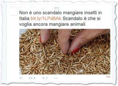 twitter-insetti-non-animali