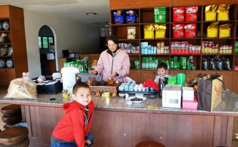 Doi Mae Salong tea shop
