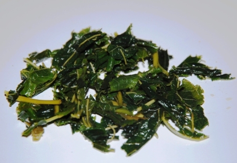 Green Mulberry Leaves Tea from Thailand, wet leaves