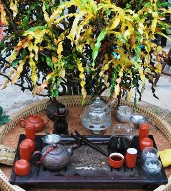 Ripened Lincang (shu) Pu erh tea in preparation