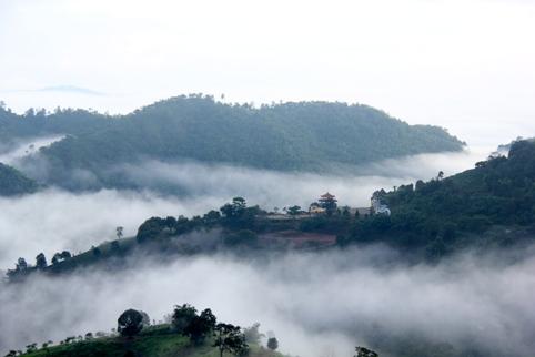 Doi Mae Salong Tea Master School