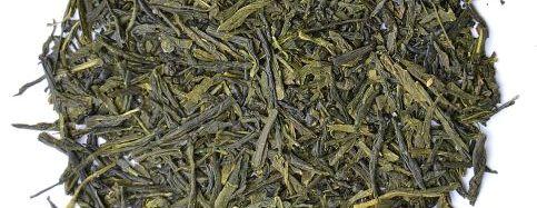 Unshaded Sencha Green Tea