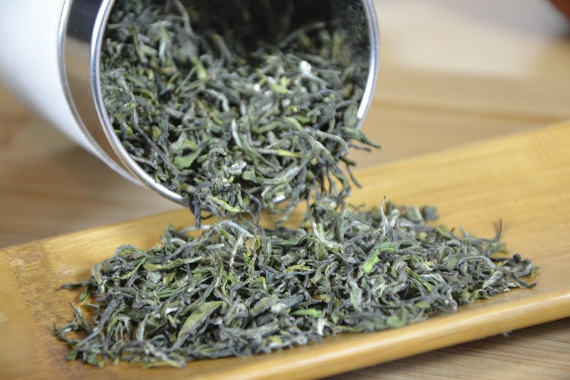 Zhejiang Imperial High Mountain Mao Feng Green Tea - single variety, single garden, single picking