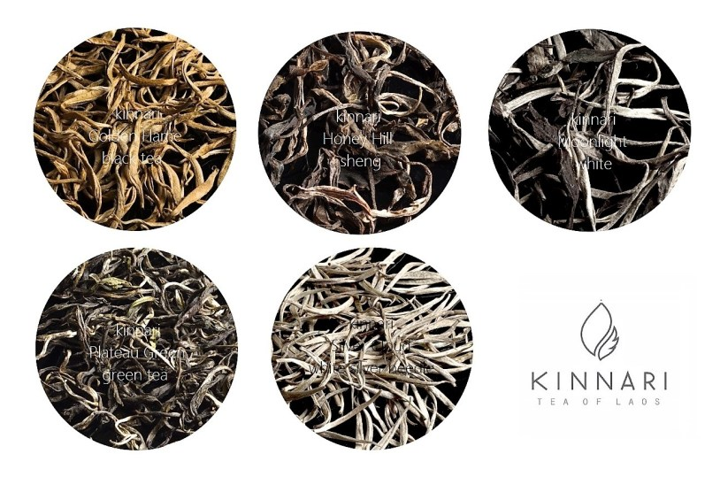 kinnari teas : golden flame black tea, honey hill sheng dark tea, plateau green tea, white moonlight and silver cloud white teas