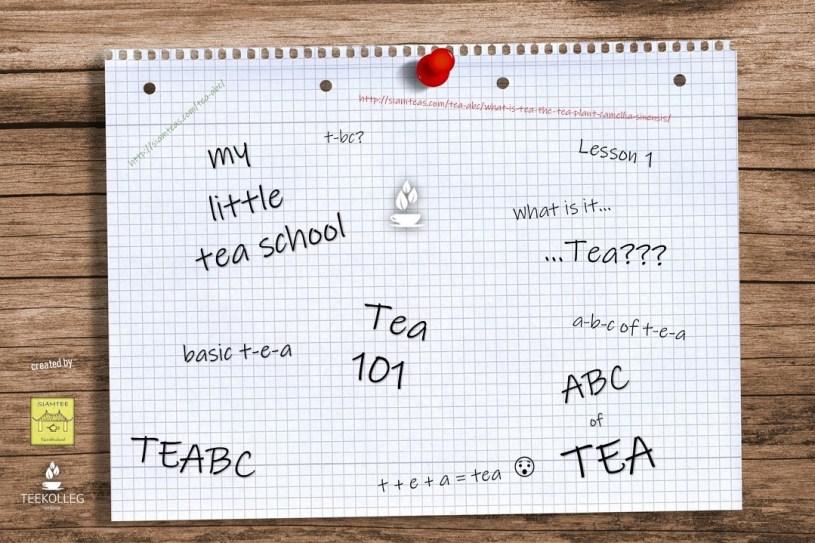 My Little Tea School - The 101 of Tea