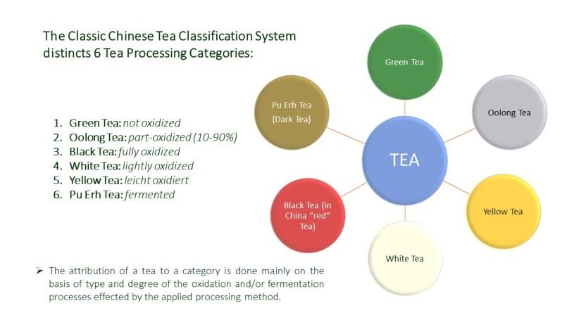 6 Tea Processing Categories-System / 6-Categories Tea Classification System