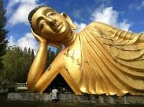 buddha-379224_1280