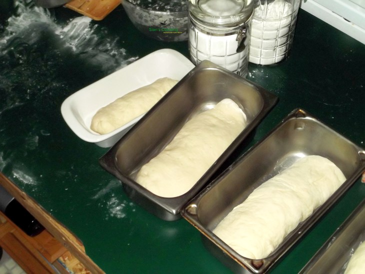 3 loaves of hardough bread