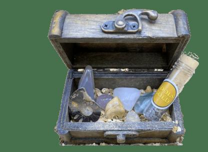 Fossil hunter treasure chest