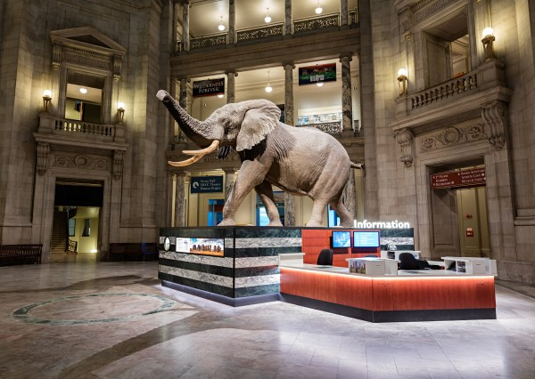 Bigger - Smithsonian Institution Archives