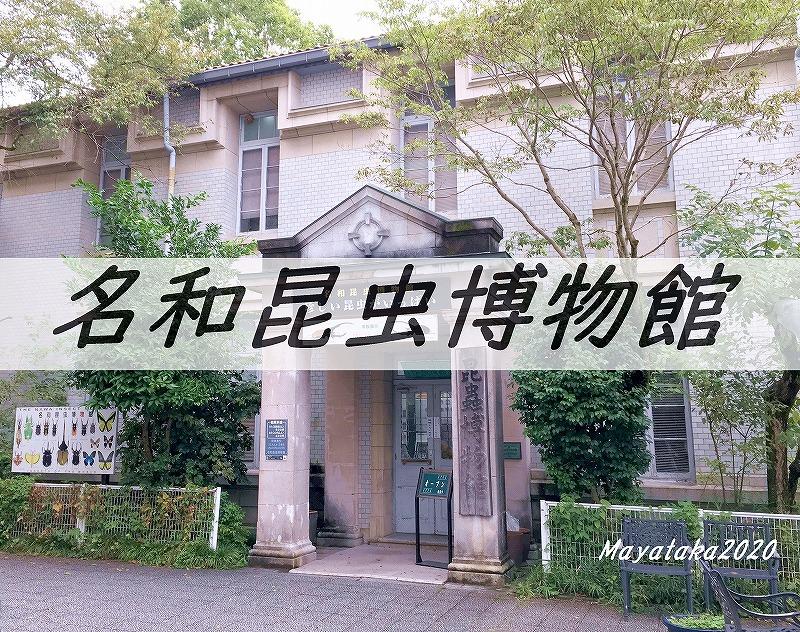 名和昆虫博物館のアイキャッチ画像