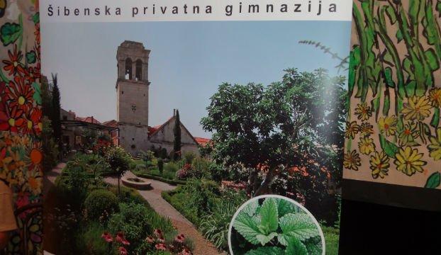 privatna gimnazija