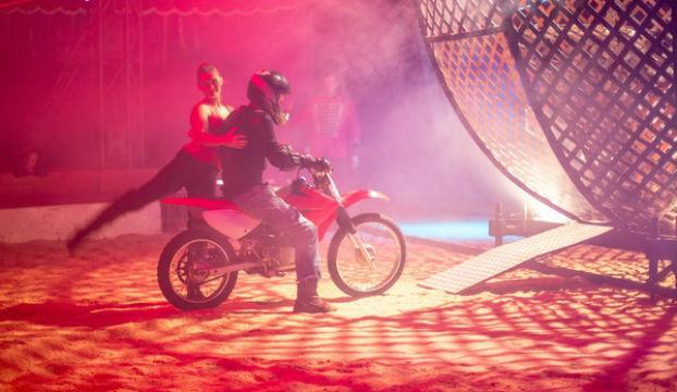 cirkus-safari-motori