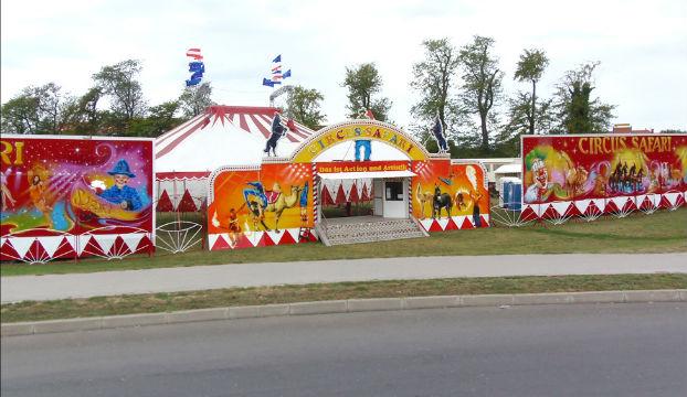 cirkus-safari