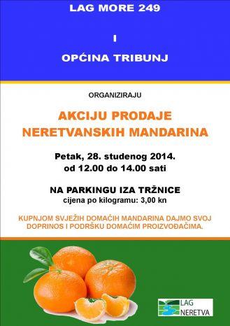 mandarine tribunj