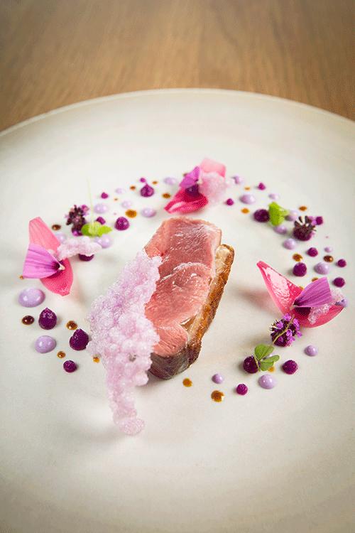 Purple-Duck-2-Culinaire-saisonnier_ San Degeimbre