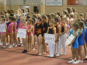 dispet_gimnastika (2)