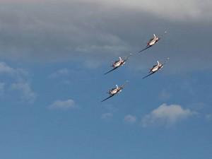 avioni krila oluje - stanic4