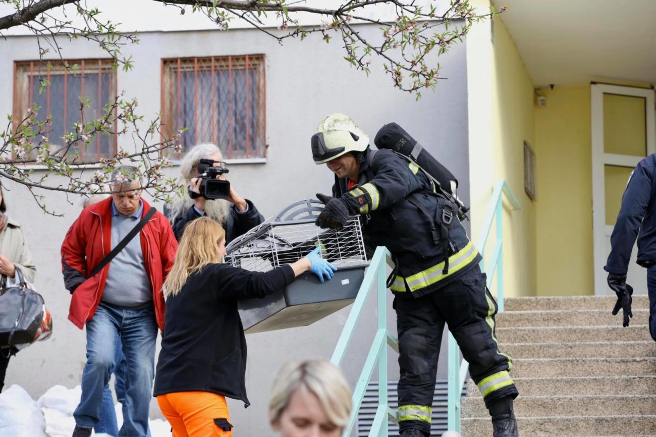 vatrogasac dodaje zeku
