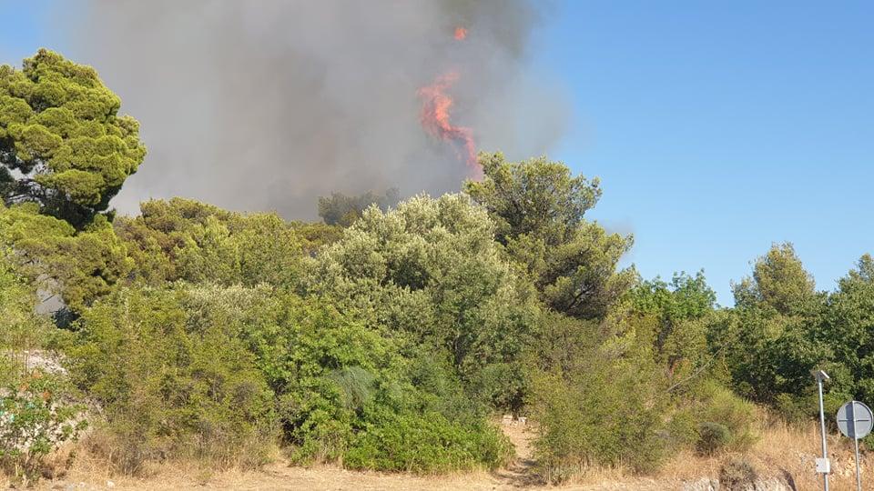 zeleni grad požar (3)