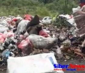 Aroma Busuk Akibat Tumpukan Sampah Berserakan Dipinggiran Jalan, TPA Liar Kah ?