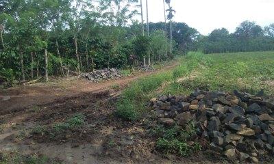 Penggunaan Anggaran Dana Desa Suka Maju Kecamatan Abung Tinggi Untuk Pembangunan Infrastruktur