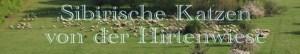 Von der Hirtenwiese Banner