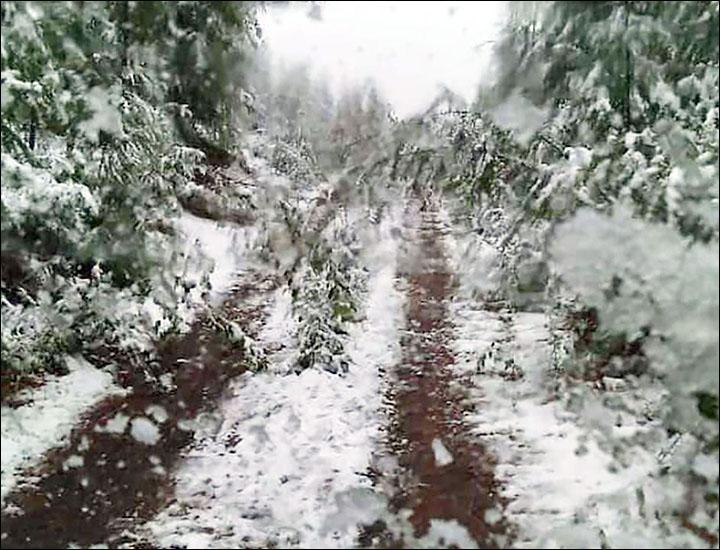 Snow in Verkhoyansk district