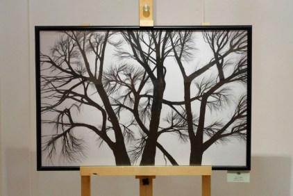 Выставка Анастасии Гуровой Фото Александра Симушкина