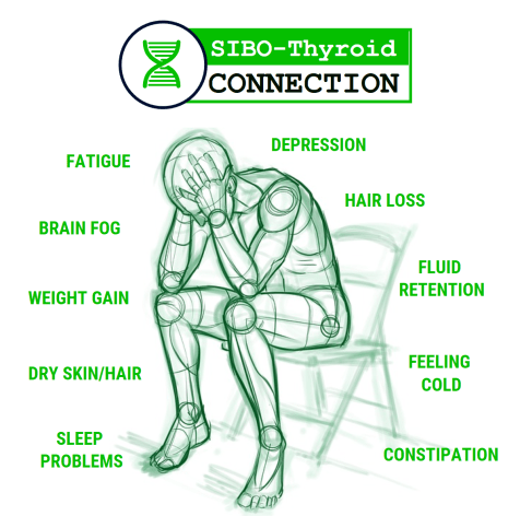 SIBO Thyroid connection
