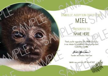 howler monkey adoption certificate
