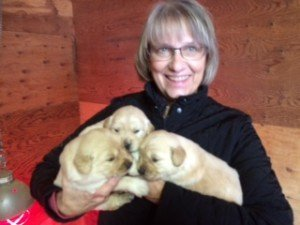 Helen and grand puppies :)