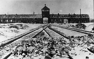 Auschmitz-Birkenau, Bundesarchiv, CC BY-SA 3_0 de