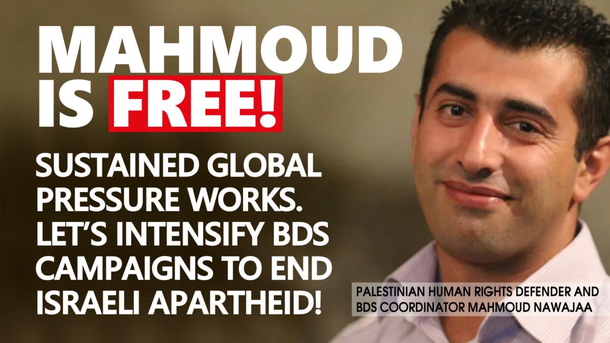 mahmoud-is-free-final